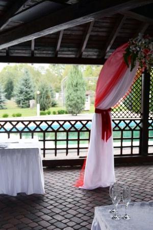 Арка на выездную церемонию Ужгород